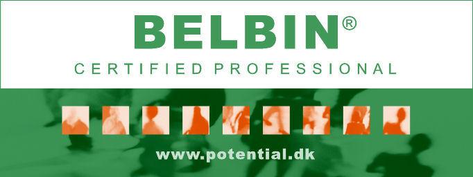 Belbin Certificeret Konsulent
