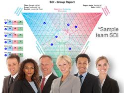 SDI Team MVS